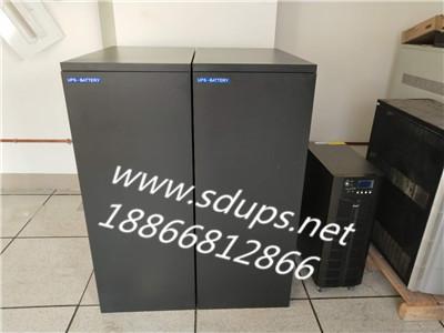 山东UPS